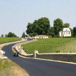 Bordeaux Vineyard France