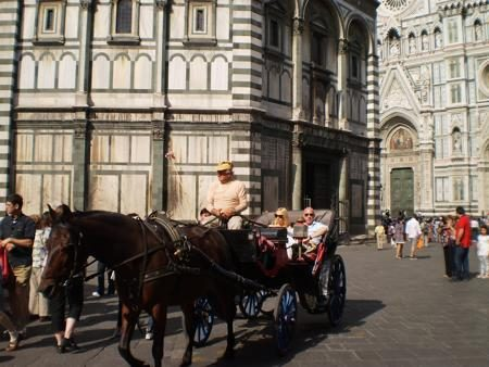 Horse Carriage at Florence