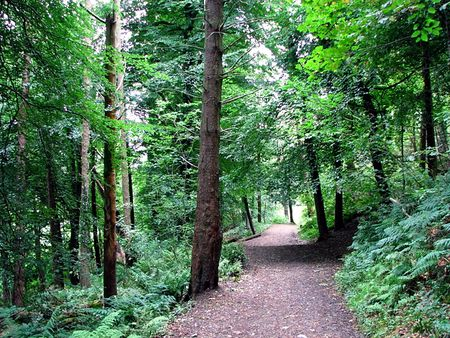 Cave Hill Country Park Belfast
