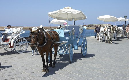 Horse Carriages in Chania